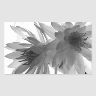 Water Lilies in Monochrome Rectangle Stickers