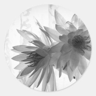 Water Lilies in Monochrome Sticker