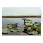 Water lilies in pond by ocean greeting card