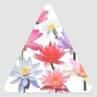 Water Lilies & Lotus Triangle Sticker