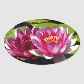 Water Lilies Oval Sticker