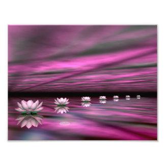 Water lilies steps the horizon - 3D render Photo Print