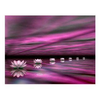 Water lilies steps the horizon - 3D render Postcard