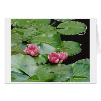 Water Lillies, Monet's House, Giverny, France Card