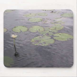 Water Lilly mouse pad