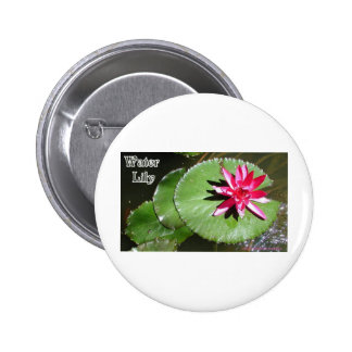 WATER LILY 1 BUTTONS