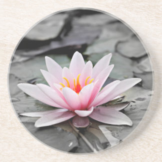 Water Lily #2 Coaster
