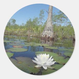 Water Lily 2 Round Sticker