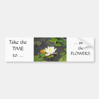 Water Lily and Leaves with coin Bumper Sticker