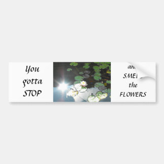 Water Lily and Sun Car Bumper Sticker