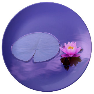 Water Lily at Dawn Plate