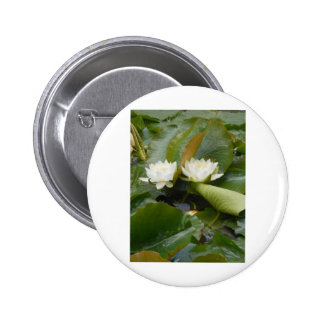 Water Lily Button