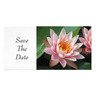 Water Lily Beauty Personalized Photo Card