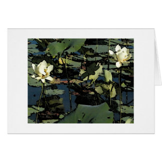 Water Lily Blossoms Note Card
