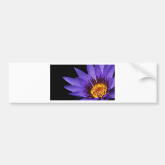 water-lily bumper sticker