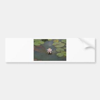 water Lily Bumper Sticker