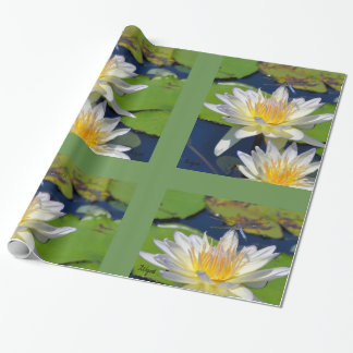 Water Lily & Dragonfly Frameable Wrapping Paper
