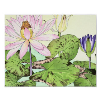 Water Lily Flowers Japanese Woodblock Number One Poster