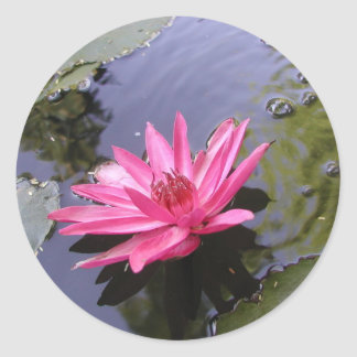 WATER LILY GREETINGS ROUND STICKER