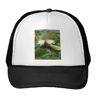 Water Lily Mesh Hats