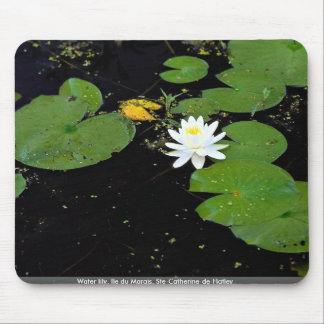 Water lily, Ile du Marais, Ste-Catherine-de-Hatley Mouse Pads