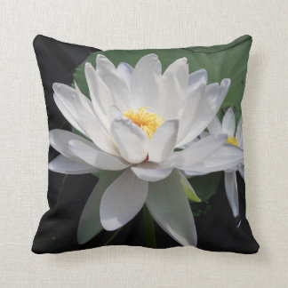 Water lily in half bloom - cushion