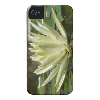Water lily iPhone 4 Case-Mate cases