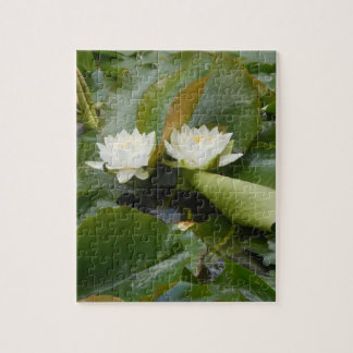 Water Lily Jigsaw Puzzle
