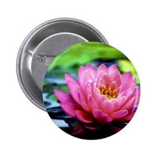 water-lily-jim-darnall jpg pinback button