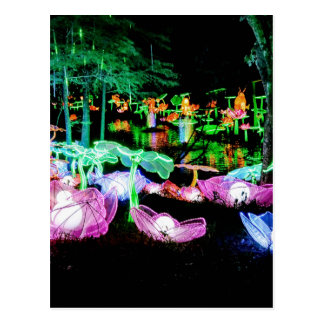 Water LIly Light Up Night Photography Postcard