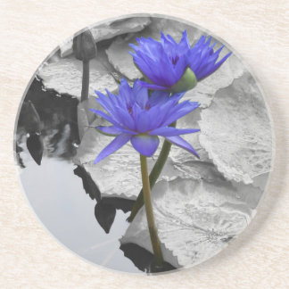 Water Lily Love Beverage Coasters
