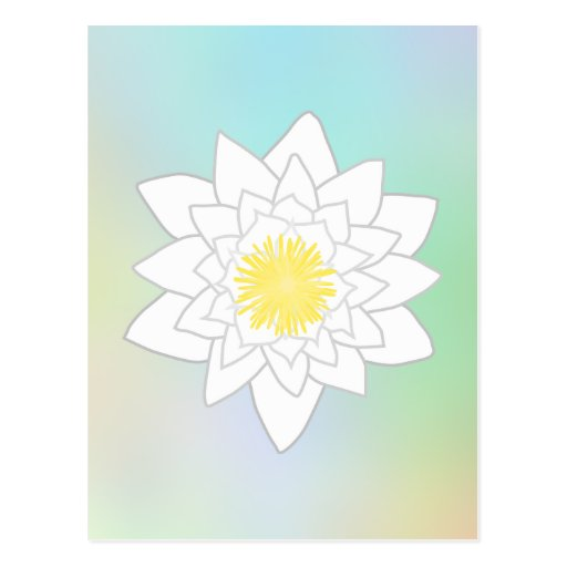 Water Lily on Pretty Pastel Background. Postcard