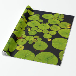 Water Lily Pads in Pond Wrapping Paper