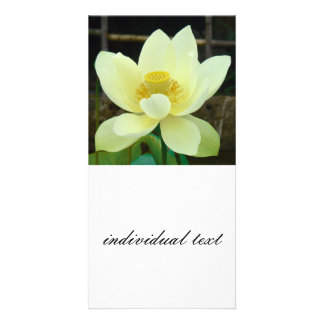water lily personalized photo card