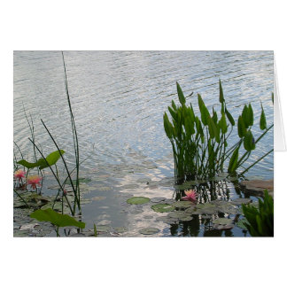 Water Lily Pond Note Card