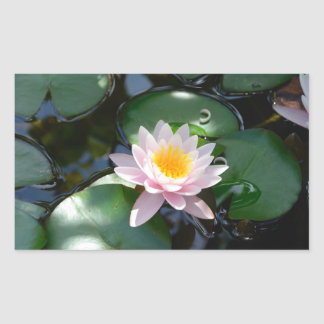 water lily rectangle Sticker