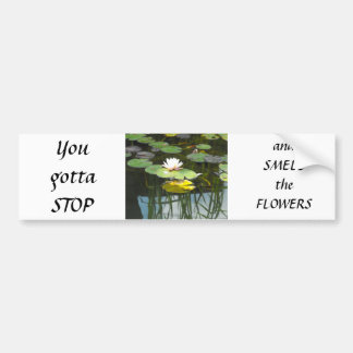 Water Lily Reflections Car Bumper Sticker