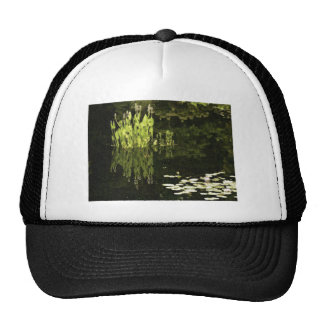 Water Lily Scene Drawing Hat