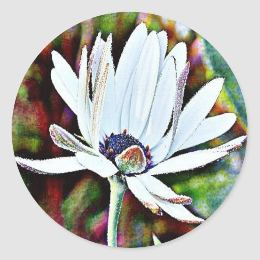 Water Lily Round Stickers