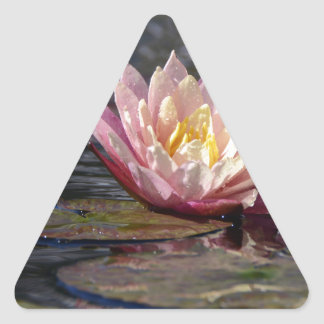 Water Lily Triangle Sticker