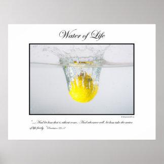 Water of Life - Lemon Poster