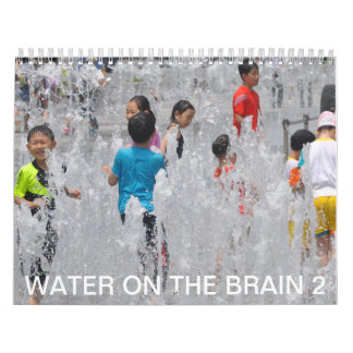 Water on the Brain 2 Wall Calendars