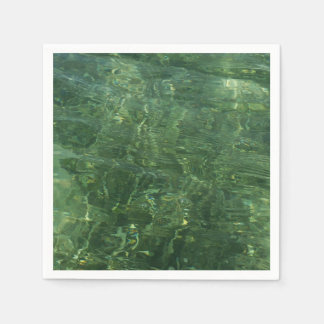 Water over Sea Grass II (Blue and Green) Photo Paper Serviettes