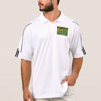 Water pipe in a garden polo shirt