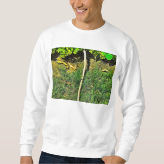Water pipe in a garden sweatshirt