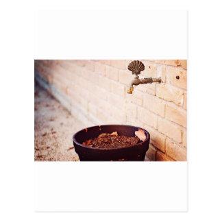 Water Pot Postcard