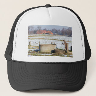 Water pump and well in winter snow landscape trucker hat