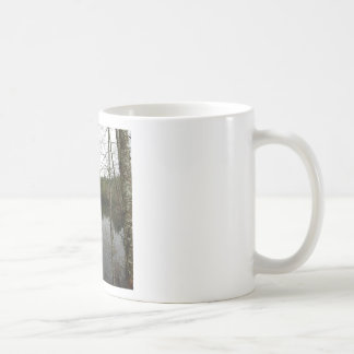 Water Reservior Reflection Mugs