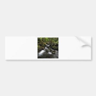 Water River Moss Woodland Bumper Sticker