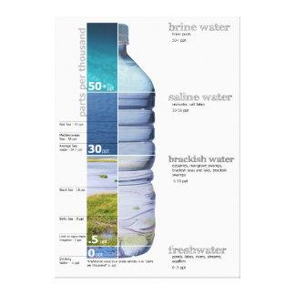 Water Salinity Diagram Brine Salt Fresh Brackish Canvas Print